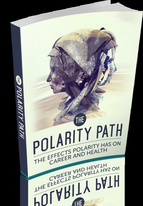 Product picture The Polarity Path MRR/Giveaway Rights