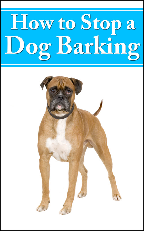 Product picture How To Stop A Dog Barking MRR